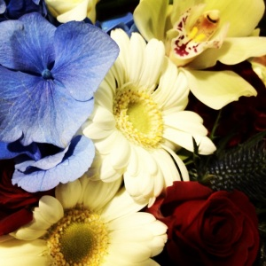 red-white-blue-flower-arrangements